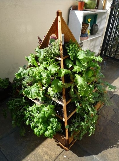 15 Growing and Using Fresh Herbs Leslie Sarna